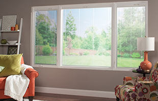 Windows services in Greater Michigan