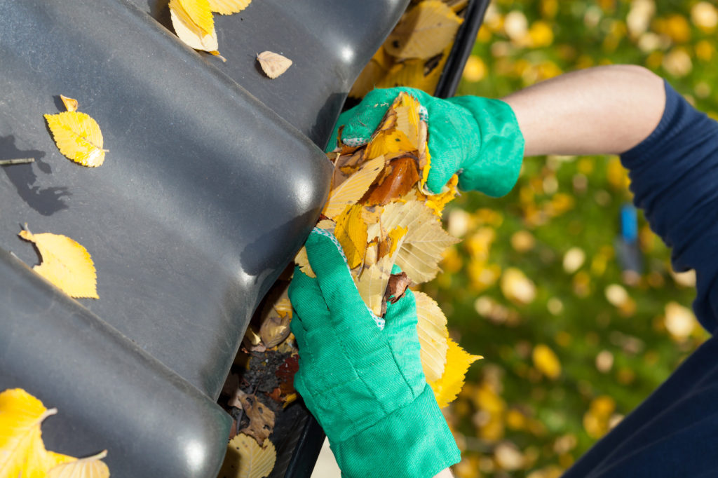 3 Gutter Cleaning Tips for the Fall