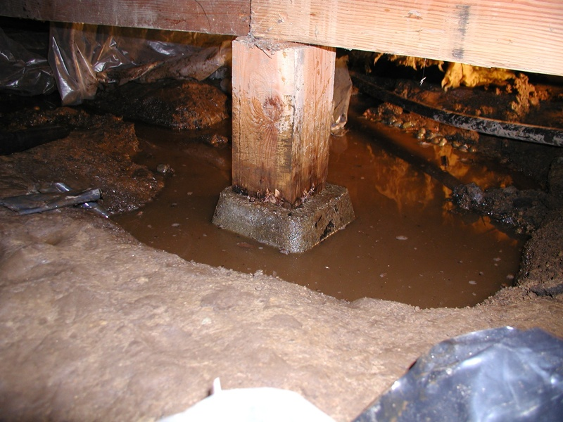Pooling water in crawl space
