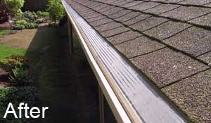 Gutter in Seattle with MasterShield gutter guard