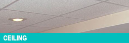 Ceiling Tile Installation by Appleby Systems