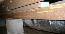 Crawl space support beams with wood rot damage in Flint, MI