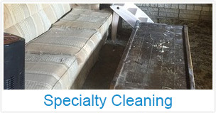 Specialty Cleaning In Michigan