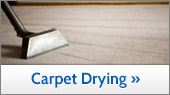 Carpet Drying In Greater Kansas City