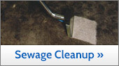 Sewage Cleanip In Greater Kansas City