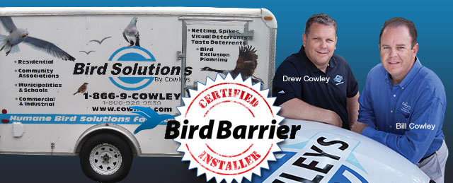 The Cowley Brothers owners of Bird Solutions by Cowleys