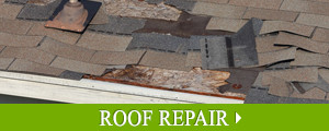 Roof Repair & Maintenance in Greater New England